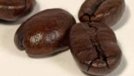 想要品嘗一杯美味的咖啡,就必須先挑選新鮮的咖啡豆。琳瑯滿目的咖啡店裡,又該怎麼挑選好的豆子?