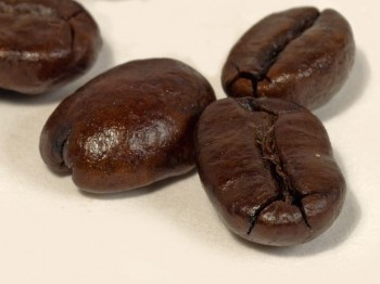 自行挑選咖啡豆