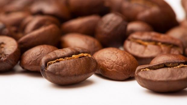 coffee-咖啡豆 - 黃金羅布斯塔