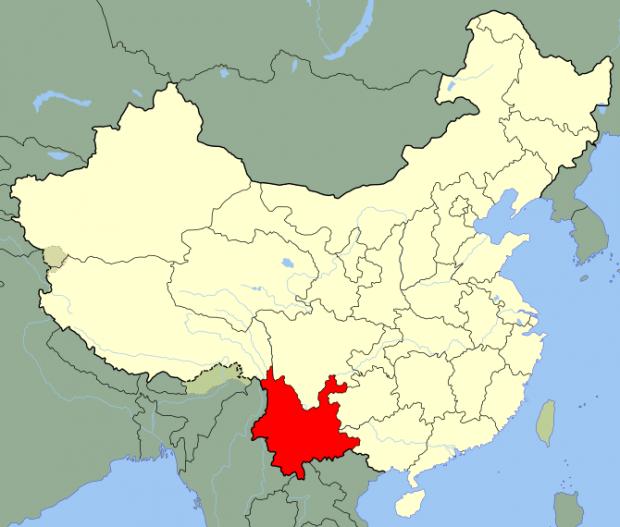 China Yunna Coffee 2