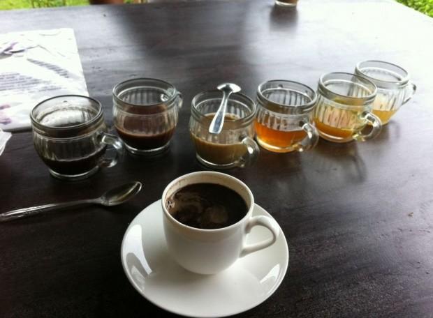 Coffee Tasting 2