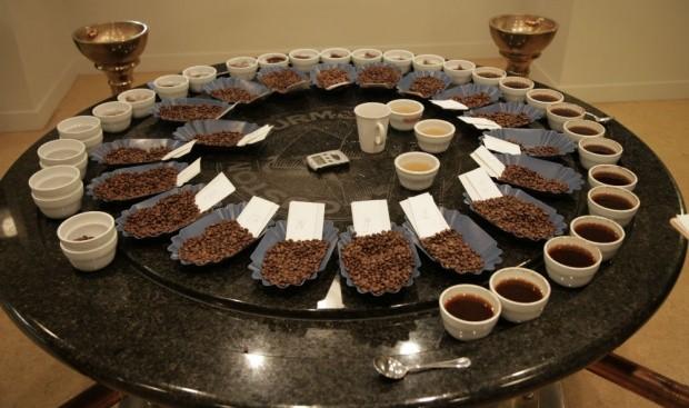 Coffee Tasting 3