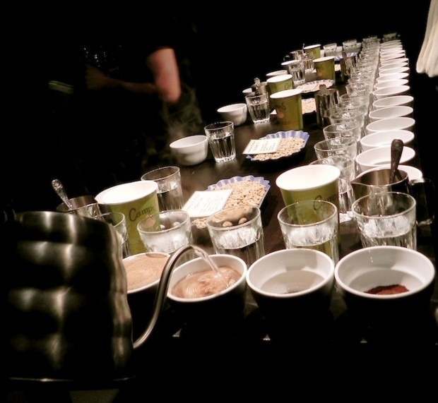 Coffee Tasting 4