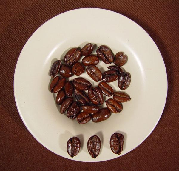 Liberica coffee 3
