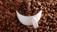 羅布斯塔咖啡又稱為「中果咖啡」、「粗壯豆」,為世界咖啡的第二品種。 產  地:印尼。