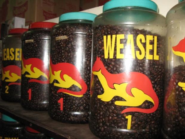 咖啡豆-鼬鼠咖啡