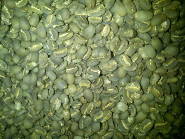 咖啡豆-曼特寧